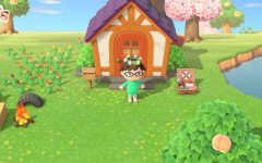 My own character's house in Animal Crossing: New Horizons. Taken from Danielle Thurman's Nintendo Switch.